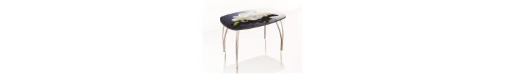 Обеденные столы со стеклом