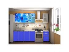 Кухня  Орхидея   радуга